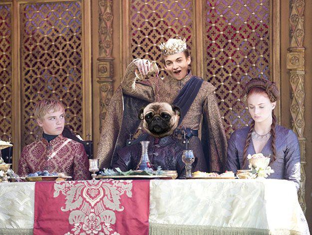 Король Джоффри и мопс: лучшая фотошоп-битва недели