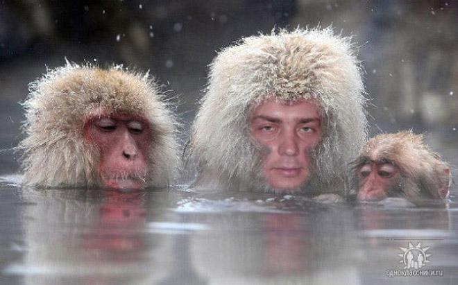 Над нами смеётся весь мир: 20 очень плохо отфотошопленных аватарок из «Одноклассников»