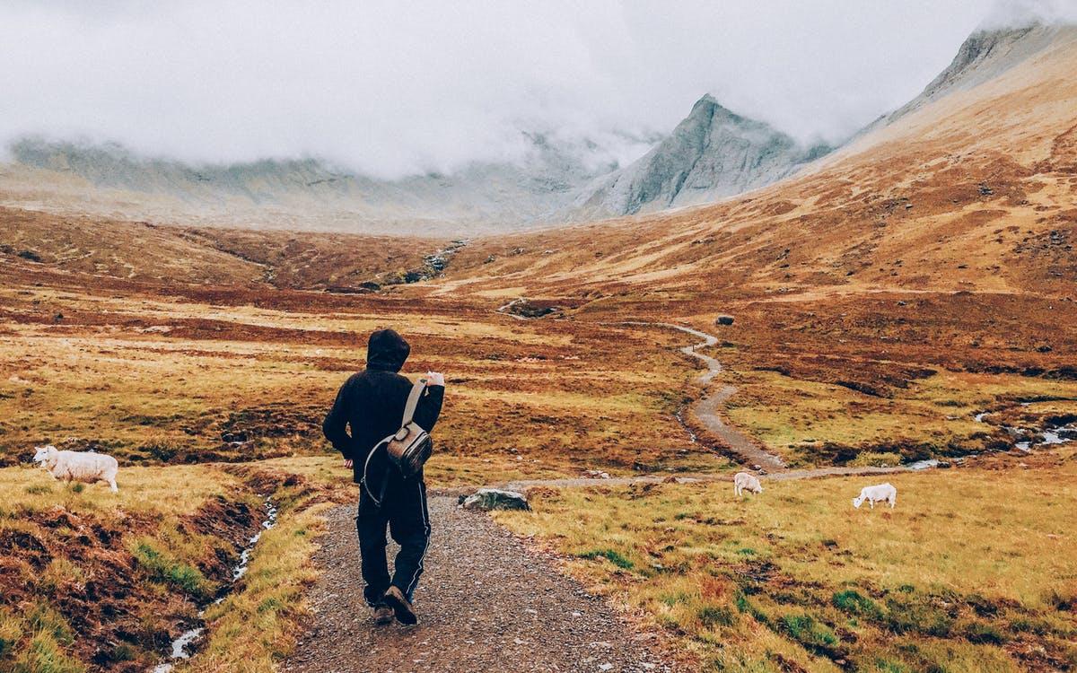 5 причин сделать пешие прогулки своим новым хобби